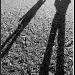 My Sunday Photo 14/12/14 Playing with shadows