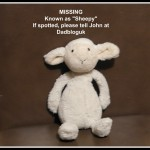 Missing; one cuddly toy