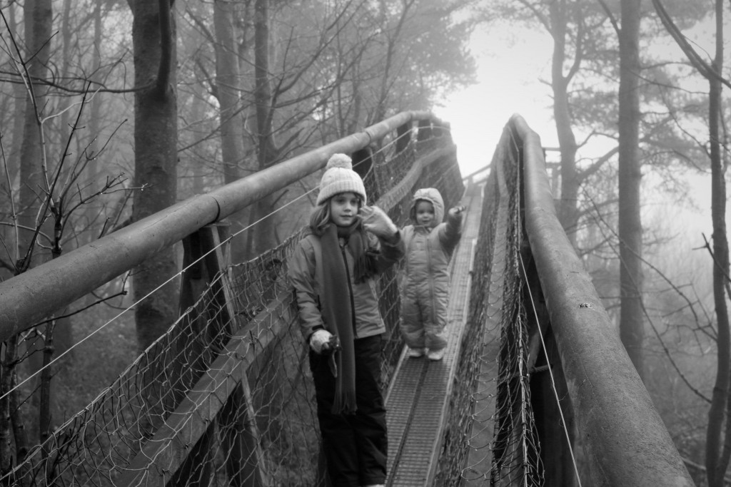 treetop walk, country kids, dad blogger, daddy blogger