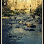 Riverside scene at Cumbernauld Glen