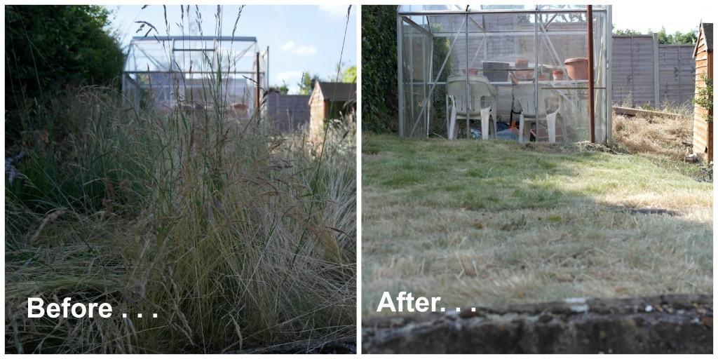Fantastic Services, gardening, garden, garden party, home maintenance