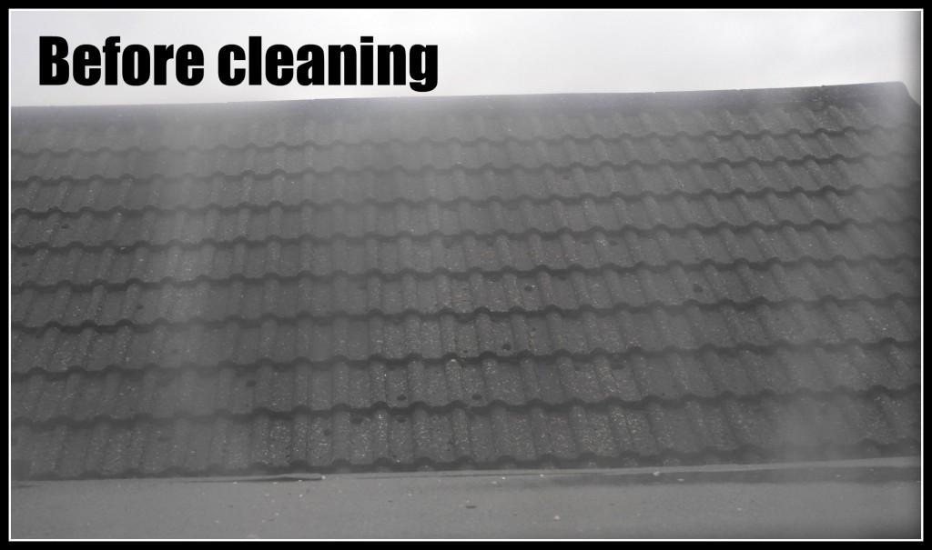 Vileda Windomatic, cleaning windows, window cleaner