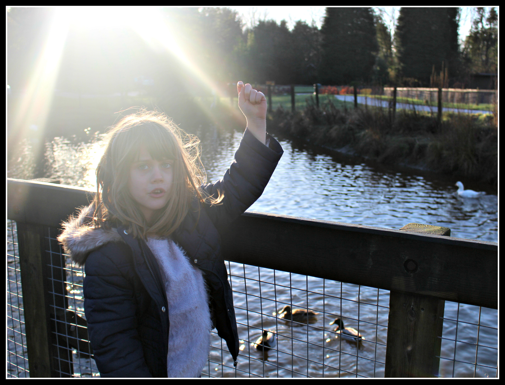 PalaceriggCountry Park, BNorth Lanarkshire, Scotland, days out with children
