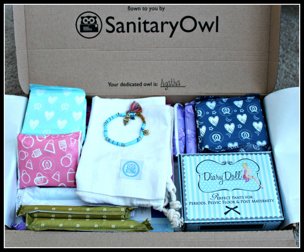 Sanitary Owl, review, reviews, period, periods, menstruation, children, education,