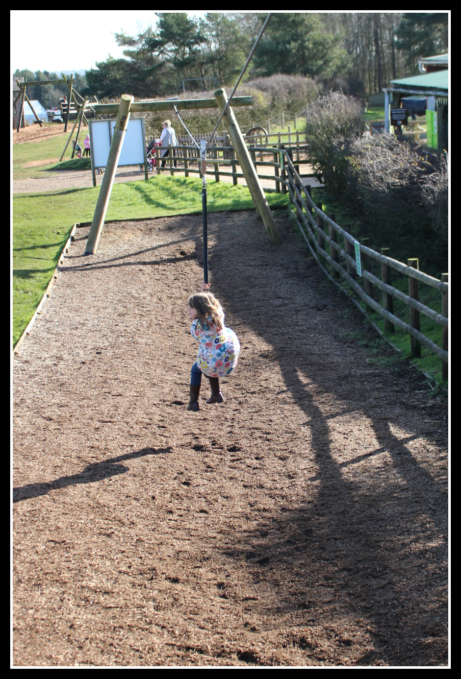Cotswold Farm Park, days out, days out with children,
