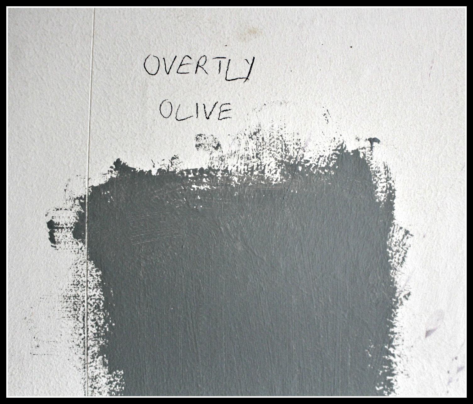Dulux, kitchen paint, DIY, hhome improvement, kitchen, open plan, construction project