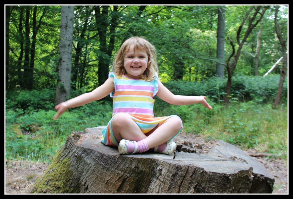 walk, woods, active children, photogrpahy, blogging #CountryKids, Coombe Mill, woodland adventure