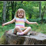 A woodland adventure