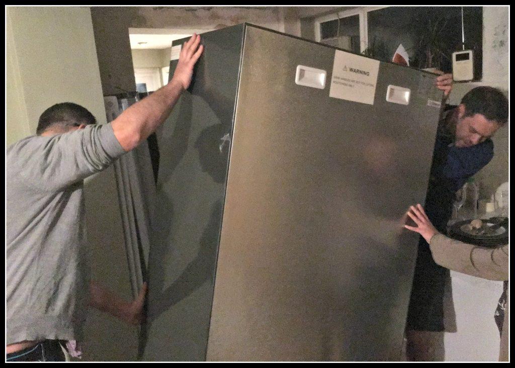 fridge, freezer, fridge freezer, kitchen, family life, humour