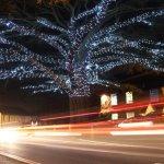 When Christmas lights and car lights collide