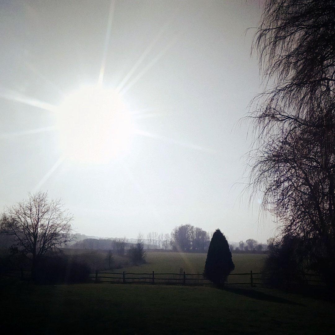 Half-term sunshine