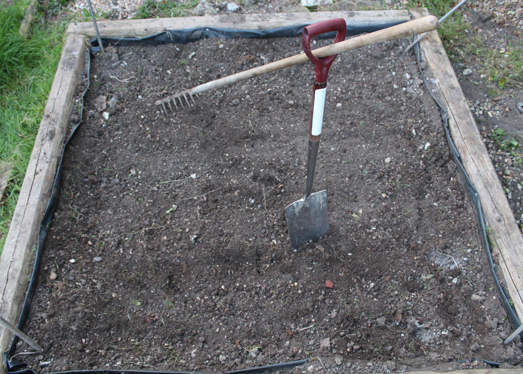 gardening, gardening with children, outside activities for children, dadbloguk, dadbloguk.com