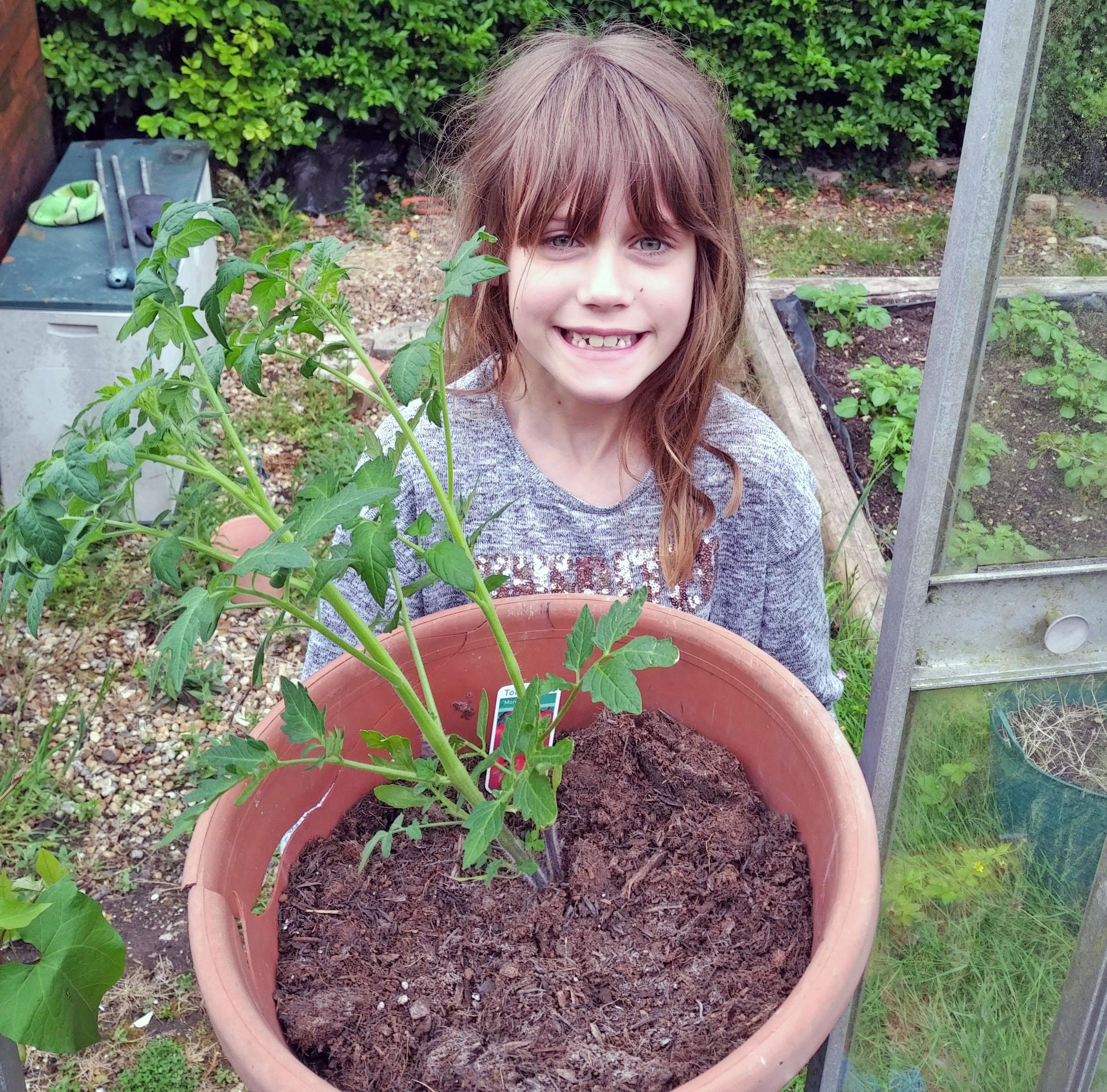 gardening, gardening with children, dad blog uk, dadbloguk.com, school run dad, vegetable garden