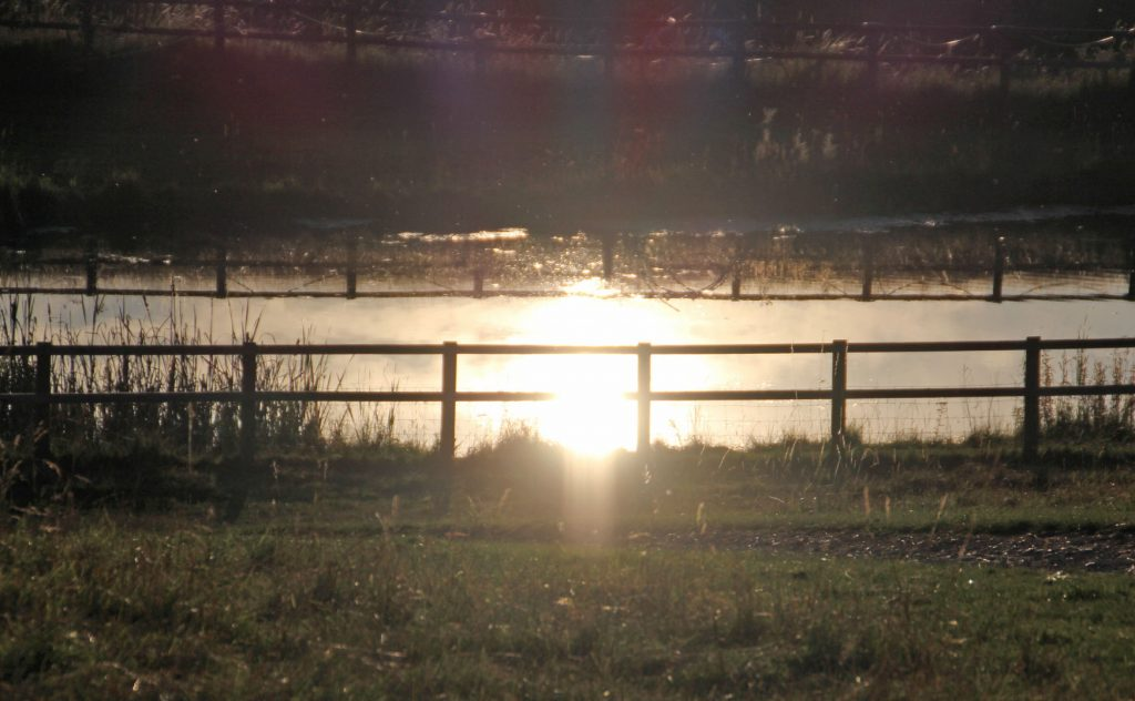 sunset, photography, dad blog uk, dadbloguk, dadbloguk.com, school run dad, #MySundayPhoto, mysundayphoto