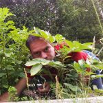 More turbulent times in the vegetable patch