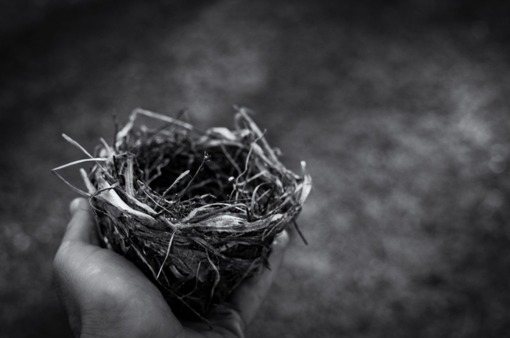 empty nest, leave home, leaving home, children, growing up, development, retirement, dad blog uk, dadbloguk.com, dadbloguk, school run dad