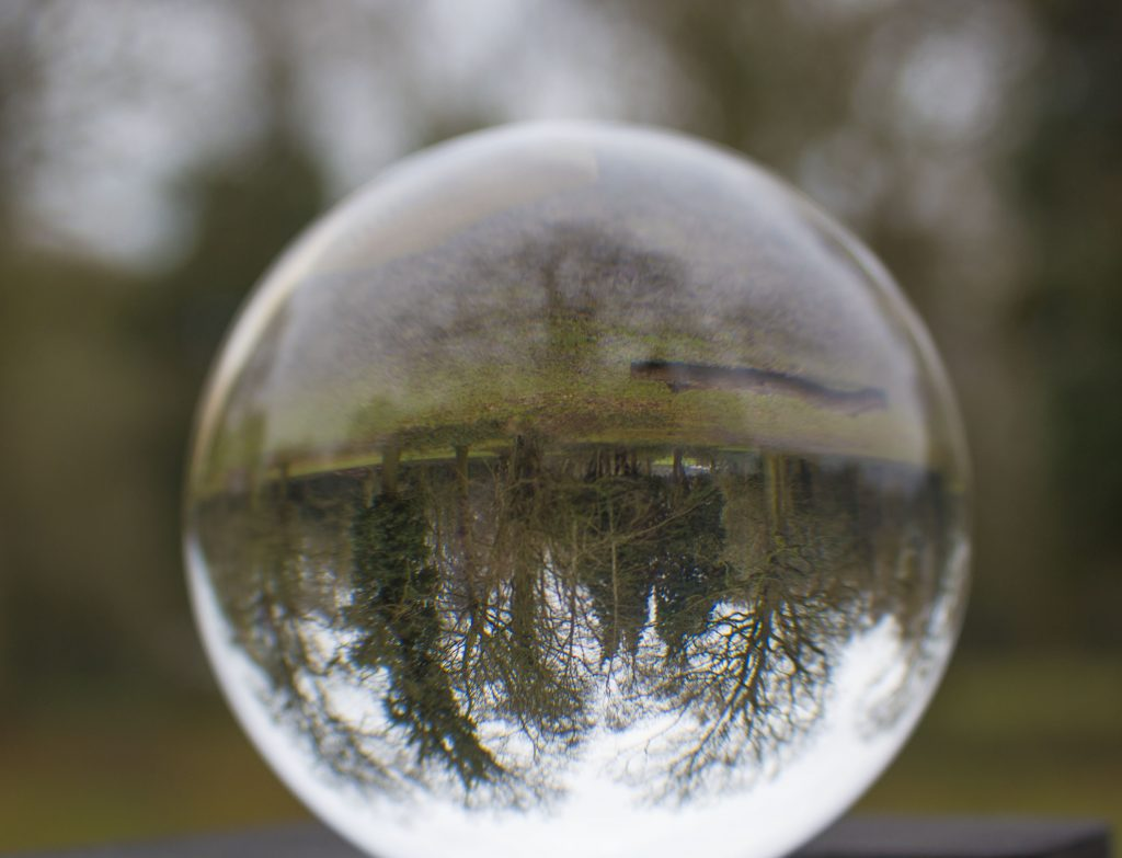 lensball, woodland, woodland photography, #mysundayphoto, photography, dadbloguk, dadbloguk.com, dad blog uk, school run dad, stay at home dad, professional blogger, professional blogger John Adams