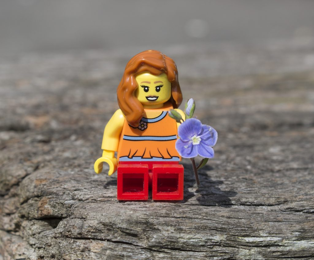 Lego. LEGO fun, lego models, #mysundayphoto, Photalife, dadbloguk, dadbloguk.com, dad blog uk, school run dad, photography, #srd