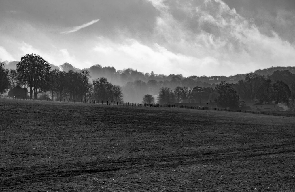 Surrey landscape, Surrey, #mysundayphoto, farmland, farm land, dadbloguk, dadbloguk.com, dad blog uk, photographer, rural Surrey
