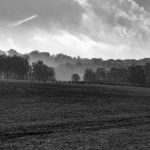 A Surrey landscape: Same photograph, four different edits
