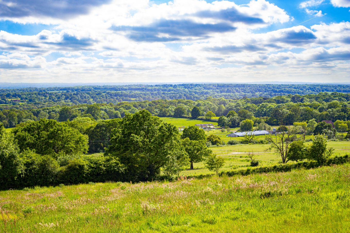 Photograph of English countryside in early summer showing green and pleasant land.