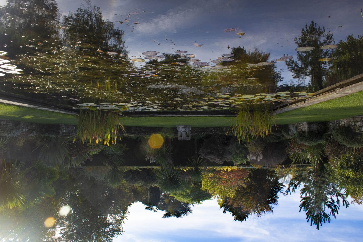 upside down, upside down camera, wrong way up image, photography, picture