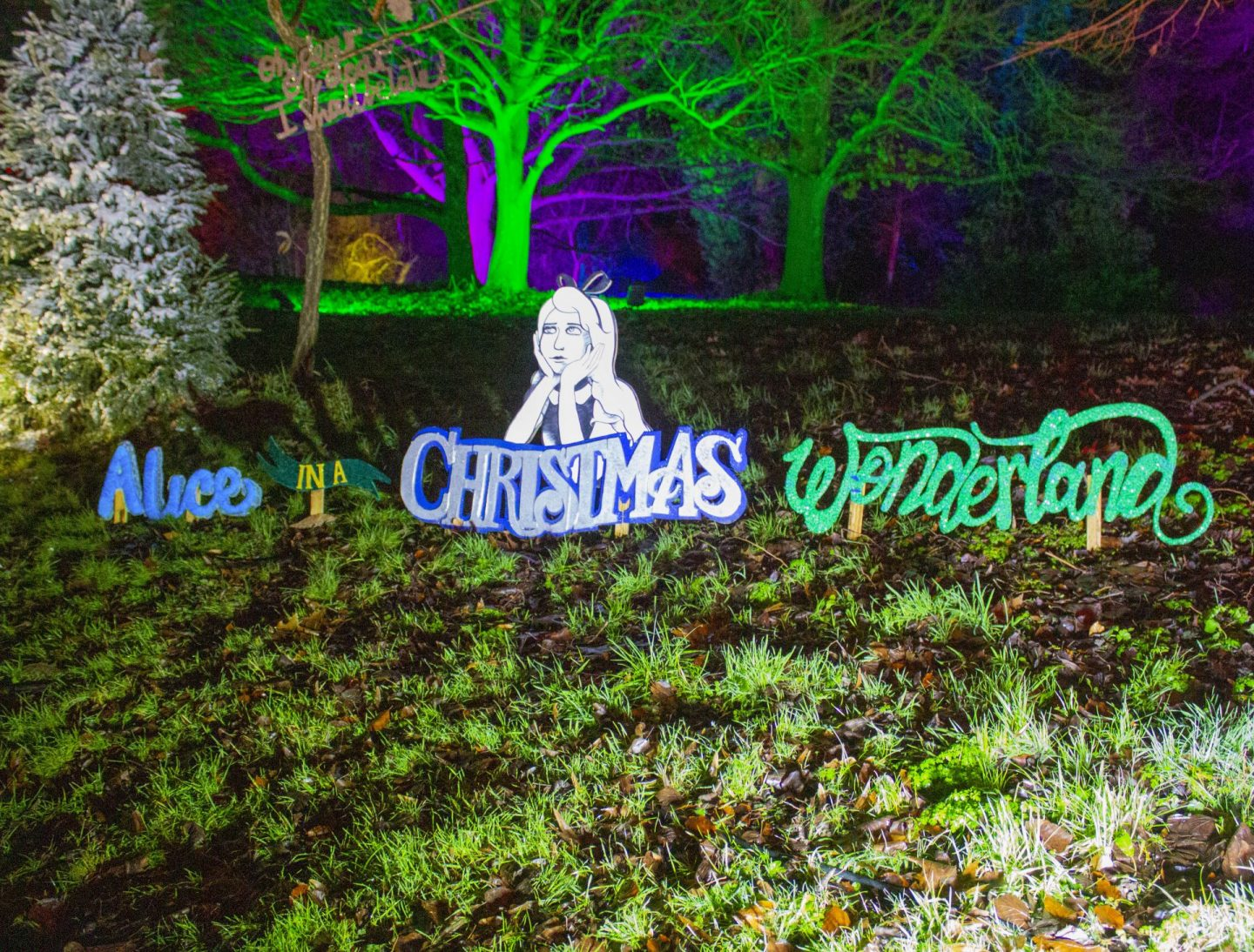 Alice in a Christmas wonderland, Christmas trail, Kent, England, Visit England