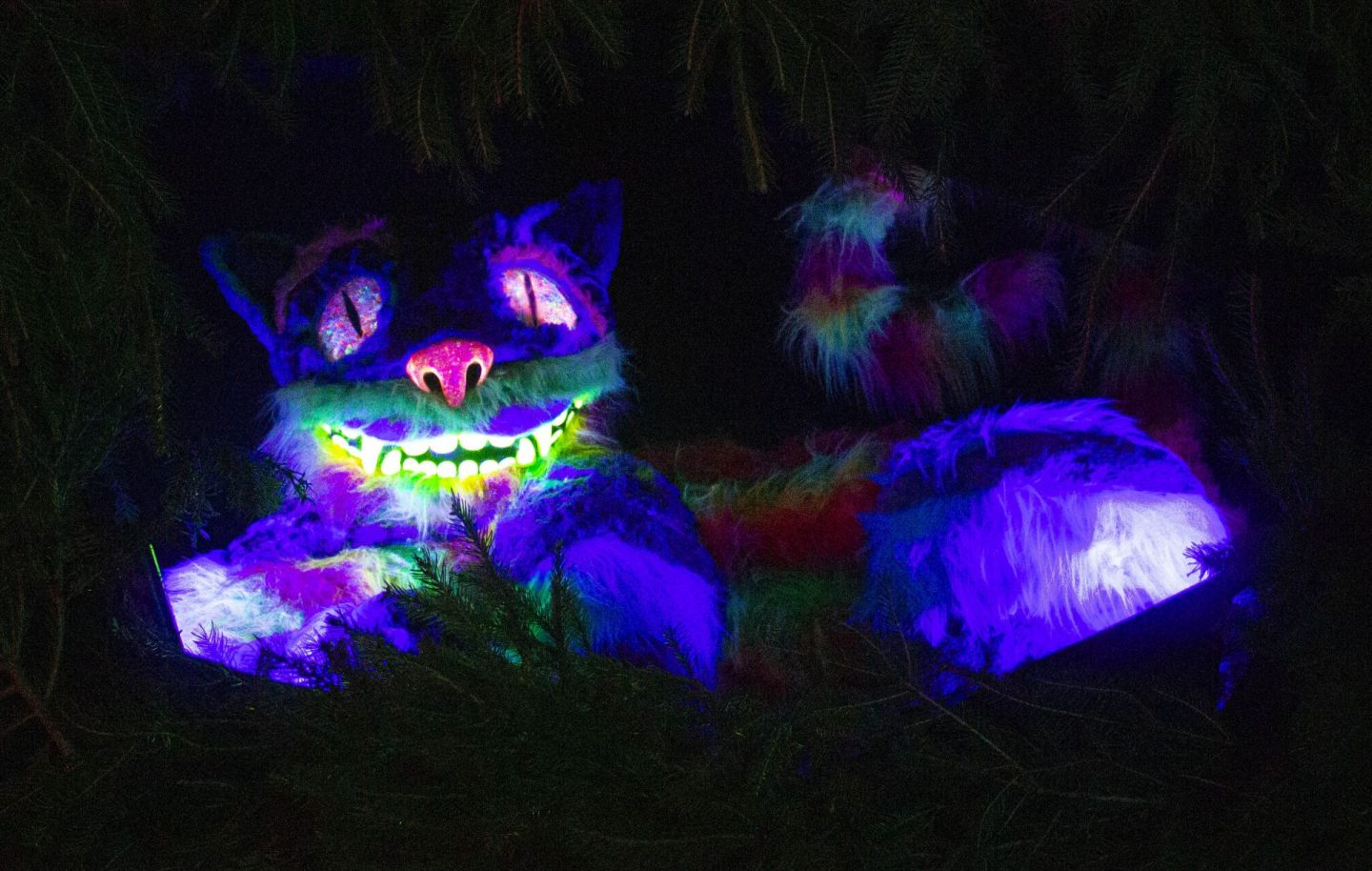 Cheshire Cat, The Cheshire Cat, Lewis Carroll, Alice in Wonderland, Hever Castle