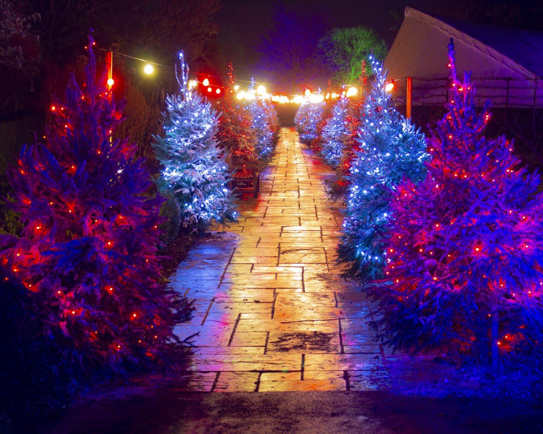Hever Castle, Hever Castle Christmas trail