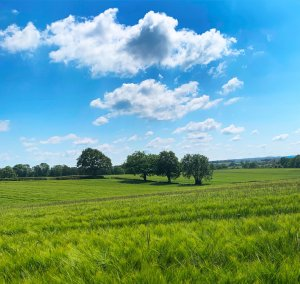 Kent countryside photographed during an INSET day