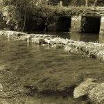 River Leach